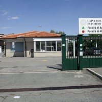 Extraordinary maintenance of the Faculty of Agriculture and Veterinary Studies of the University of Turin